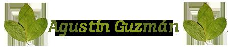 Agustin Guzman